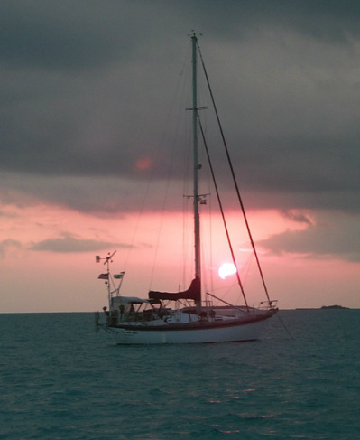 anchored cherokee rose at sunset